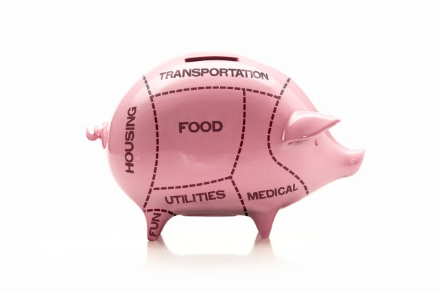 Piggy bank divided up like cuts of meat --- Image by © C.J. Burton/Corbis